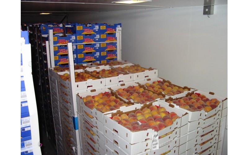 Chambre de mûrissement des fruits